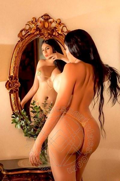 Violeta  FALERNA 3312354244